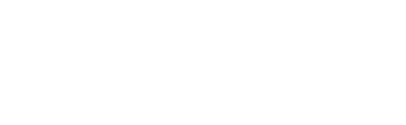 Nederlandse Audiovisuele Producenten Alliantie